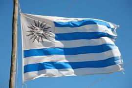 乌拉圭风电项目获中方4.5亿贷款