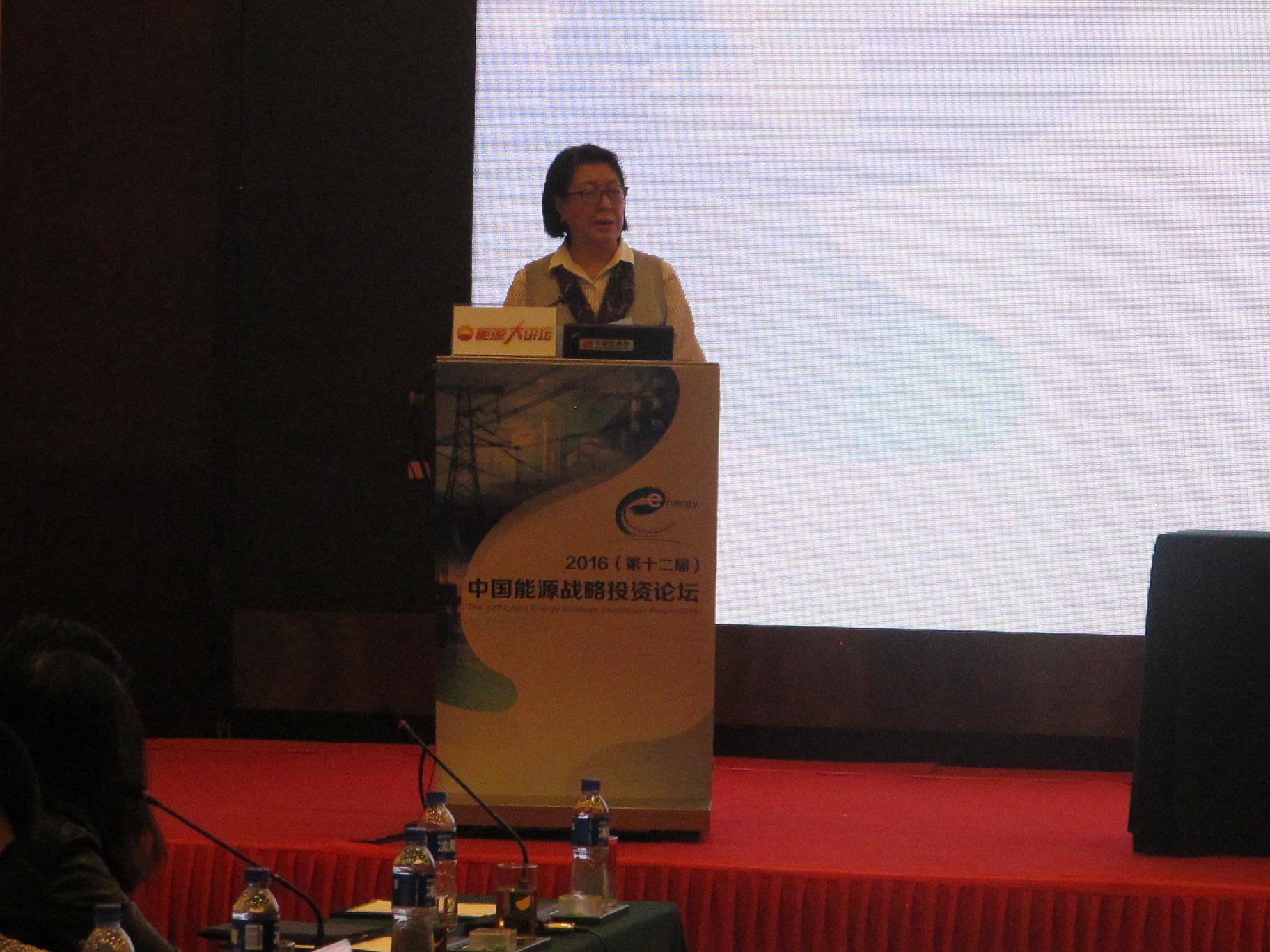 2016中国能源战略投资论坛在京召开-新闻-能源资讯