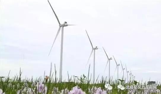 能源资讯-中国能源