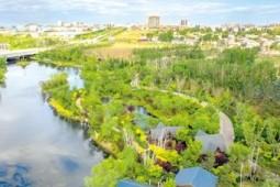河北秦皇岛:海滨湿地生态整治再现自然之美