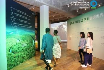 保护国际《树冠之下》展览获好评