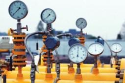 构建起天然气全环节价监体系