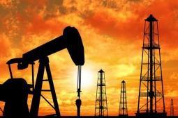 外媒:部分产油国或放弃减产 油价高涨令欧佩克担忧