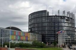 生物能源必成为欧盟能源结构的重要组成部分