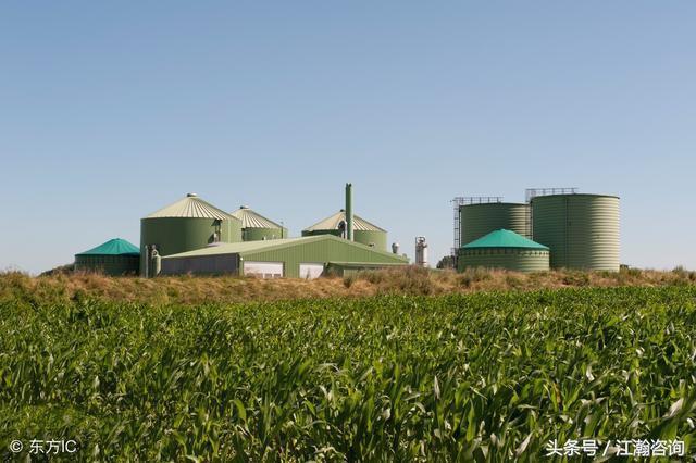 中国生物质发电行业发展趋势与投资前景分析